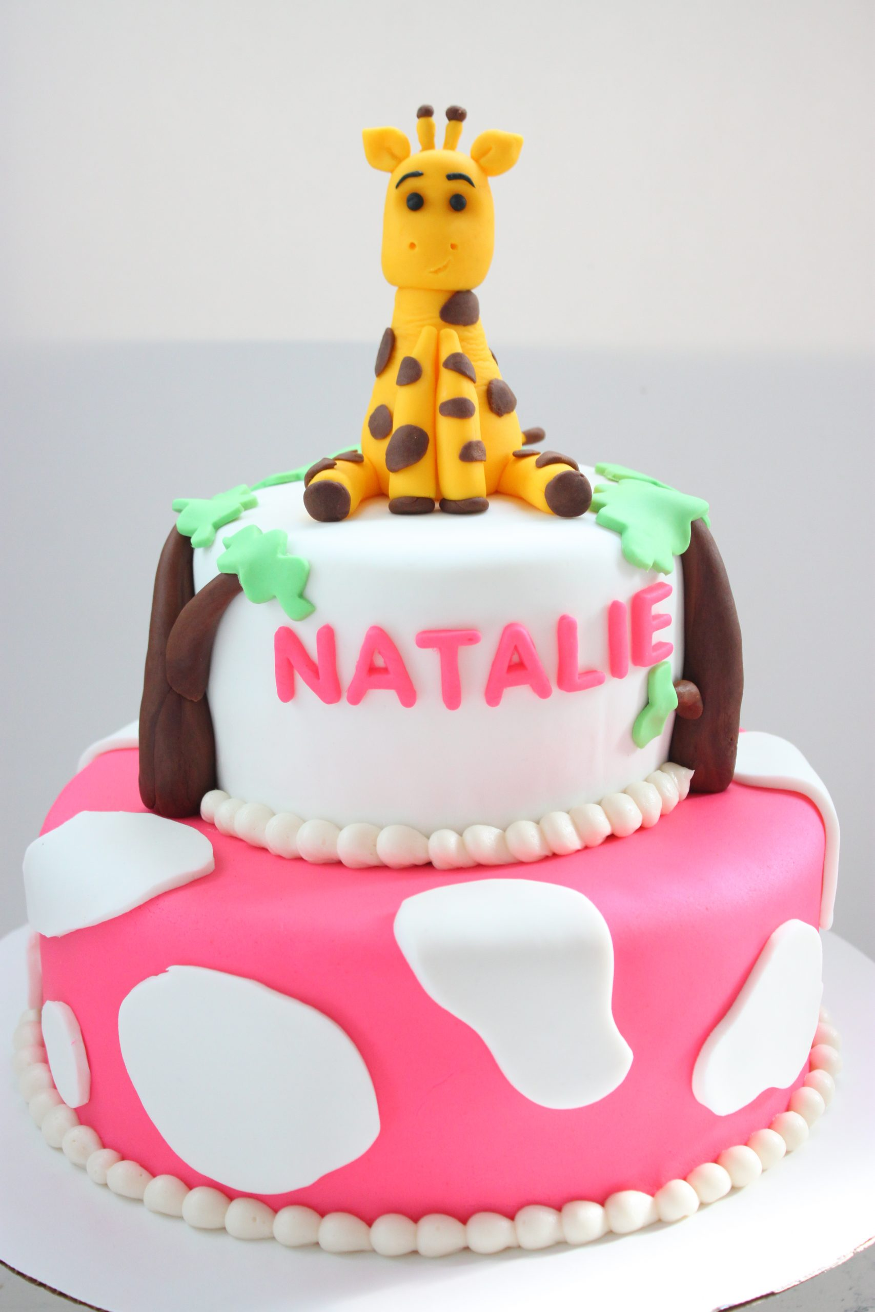 fondant zoo themed cake